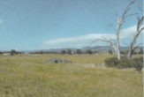 78 Tinja Lane, Putta Bucca, NSW 2850