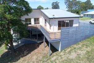 53 Hilltop Parkway, Tallwoods Village, NSW 2430