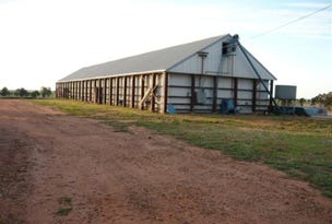 Corobimilla Grain Shed, Corobimilla, NSW 2700
