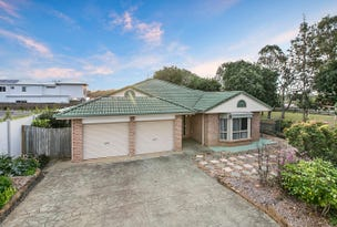 11 Marc Place, Cleveland, Qld 4163