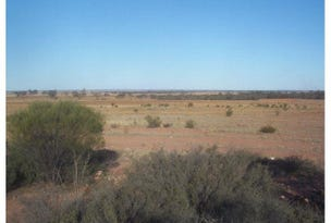 3282, Rabbit Proof Fence, Burracoppin, WA 6421