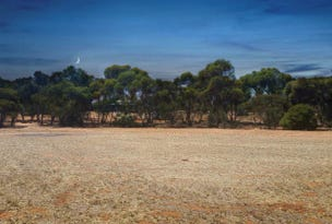 Lot 45 Martha Street, Caloote, SA 5254