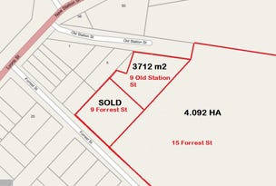 15 Forrest Street & 9 Old Station Street, Cressy, Vic 3322