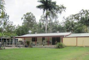 345 Midge Point Road, Bloomsbury, Qld 4799