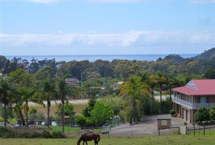 93 Silverdell Place, Surf Beach, NSW 2536