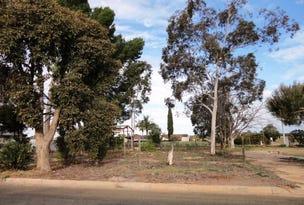 2 (4) Hawdon Street, Dareton, NSW 2717