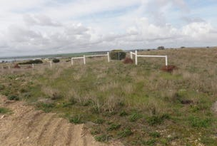 Lot 1 Kewell Road, Wangary, SA 5607