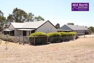 19 Thompson Priest Road, Mintaro, SA 5415