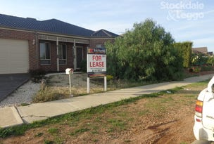 53 Gallery Ave, Melton West, Vic 3337