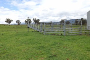 Lot 10 Golden Highway, Jerrys Plains, NSW 2330