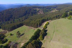 1145 Whitelaws Track, Budgeree, Vic 3870