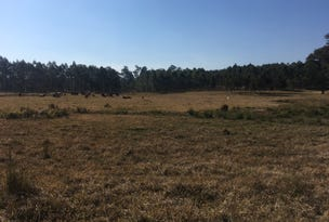 Lot 1 Upper Fine Flower Road, Upper Fine Flower, NSW 2460
