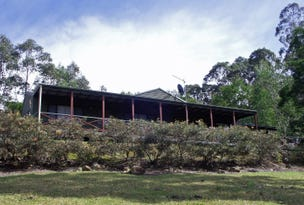 Lot 4,1953 Chichester Dam Road, Dungog, NSW 2420