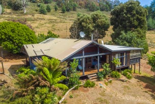 31 Banks Road, Derby, Tas 7264