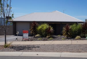 20 Waterlily Terrace, Murray Bridge, SA 5253