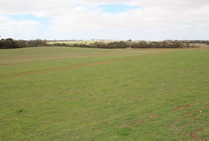 Lot 401, Section 407, North Hills Road, Dutton, SA 5356