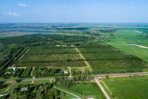 Palm Creek Plantatio, 34348 Bruce Hill, Giru, Qld 4809