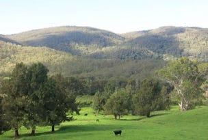 Lot 1 Majors Creek Mountain Road, Araluen, NSW 2622
