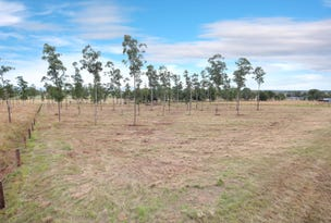 Lot 4&5, Red Hill Road, Wilsons Plains, Qld 4307