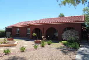 40 Third Street, Napperby, SA 5540