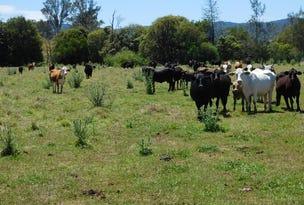47 Tunglebung Creek Road Via, Bonalbo, NSW 2469