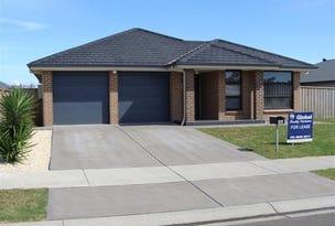 45 Mistfly St, Chisholm, NSW 2322