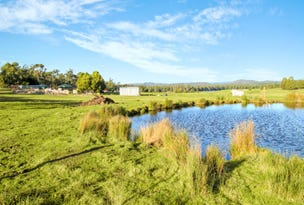 335 Coal Hill Road, Latrobe, Tas 7307