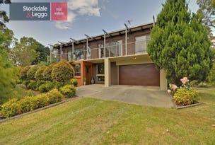 60 Ambrose Road, Hazelwood North, Vic 3840