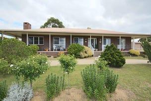 161 Petre Street, Tenterfield, NSW 2372