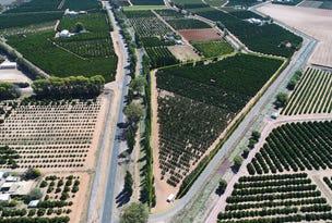 Farm 729-2 Garner Road, Wamoon, NSW 2705