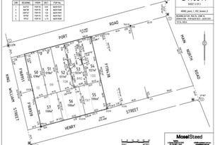 1 Cnr Henry Street & Port Road, Auburn, SA 5451