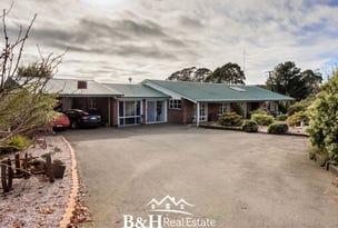 953 Ridgley Highway, Ridgley, Tas 7321