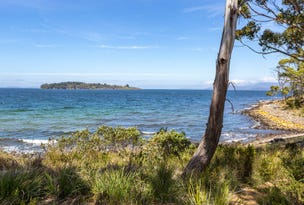 . Channel Highway, Charlotte Cove, Tas 7112