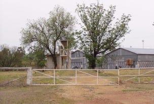 MINGOOLA ROAD, Texas, Qld 4385