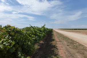 Millewa Vineyard, Lot 3 Sturt Highway, Cullulleraine, Vic 3496