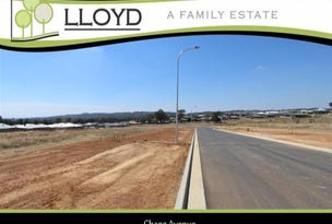 Chang Avenue, Lloyd, NSW 2650