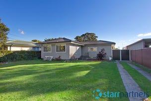 156 Carlisle Avenue, Blackett, NSW 2770