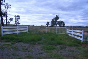 Lot 2 Nanardine Lane, Parkes, NSW 2870
