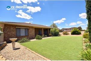 91 Adelaide Road, Mannum, SA 5238