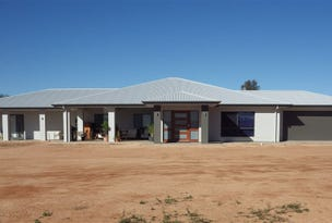 784A Government Road, Renmark West, SA 5341