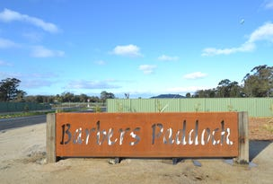 Stage 3A Barber's Paddock, Moama, NSW 2731