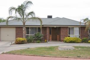 32 Ian Drive, Paringa, SA 5340