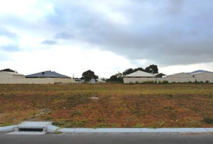 Lot 227 Thistle Avenue, Castletown, WA 6450