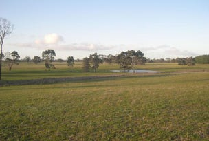 Lot 2, 2147 Bangham Road, Frances, SA 5262