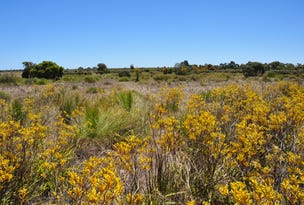 Lot 151 Wildflower Ridge Estate, Lower Chittering, WA 6084