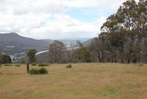 Lot 8, Haney Road, Lachlan, Tas 7140