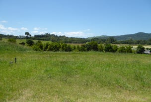 Lot 117 Tallowood Ridge (off Tuckeroo Avenue), Mullumbimby, NSW 2482