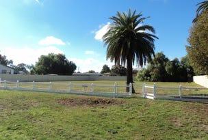 Lot 2 & 3, Livingstone Street, Mathoura, NSW 2710