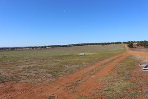 Lot 28 Badgingarra Road, Dandaragan, WA 6507