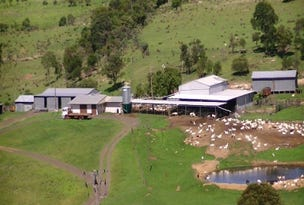 LARGE COMMERCIAL GOAT DAIRY, Maclagan, Qld 4352